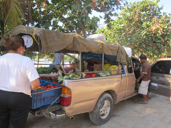 6709485-Fruit-and-Vegetable-Truck-0